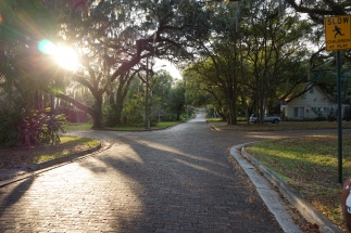 Brooksville neighborhood street